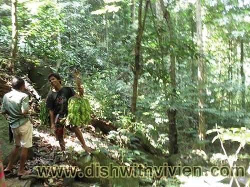 Dusun52