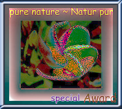 special award pure nature