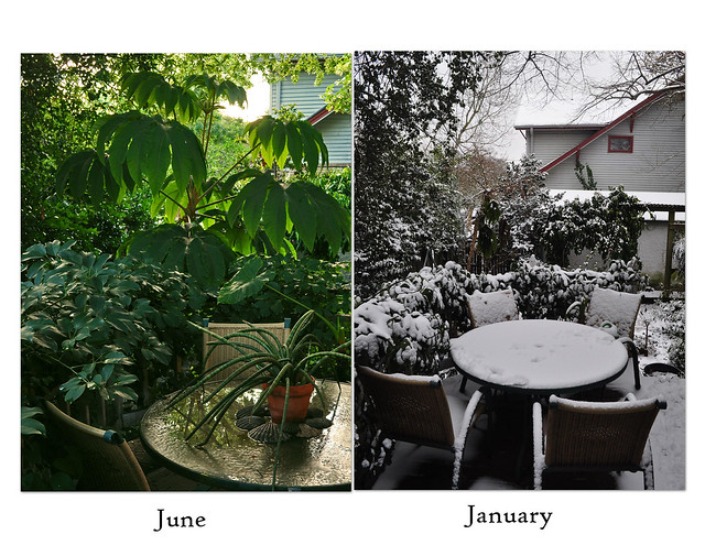 June-January