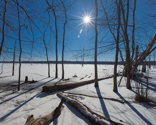 blue trees winter sky sun snow water landscape manasqaunreservoir