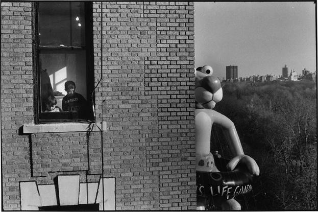 1988 NYC, Macy's Thanksgiving Day Parade (Elliott Erwitt)