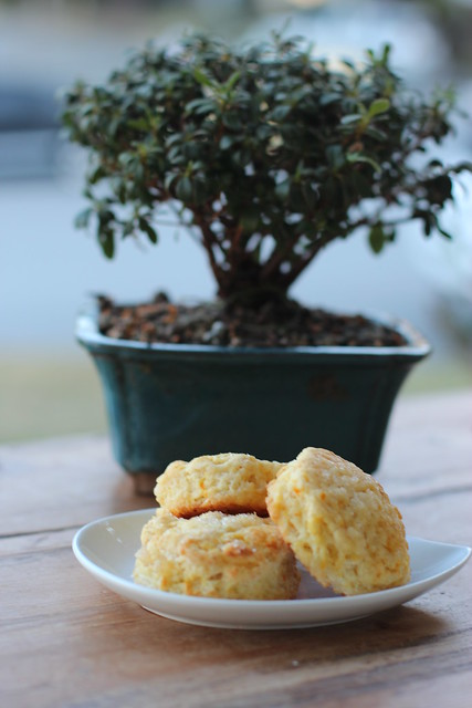 Cara Cara & Ginger Scone - Mark Bittman recipe
