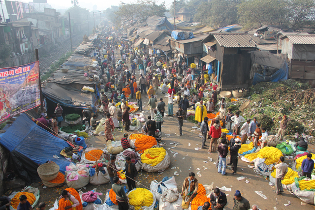 Mullik Ghat Flower Market in Kolkata, India