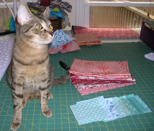 I called for a Helper Cat model for this week's WIP Wednesday picture.
