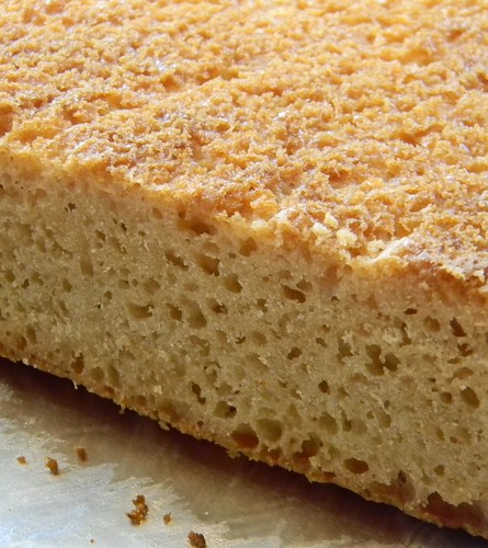 Spongey Crumb