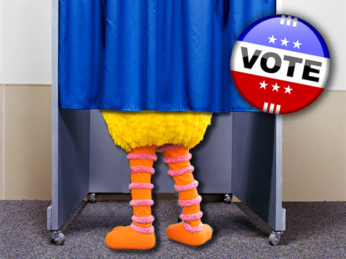 Big Bird Voting