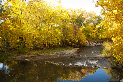 city trees orange reflection tree green fall nature water colors beautiful yellow river outdoors utah nikon colorful warm trail parkway provo d60