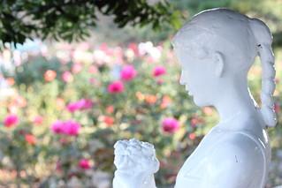 Girl of rose / バラの少女