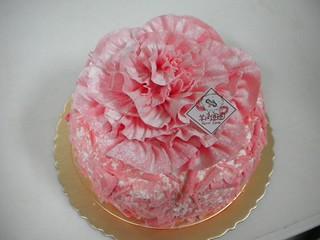 生日蛋糕 康乃馨