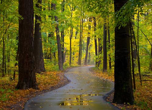 autumn fall october michigan lansing scottwoods