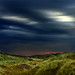 Dunes by SebbZee