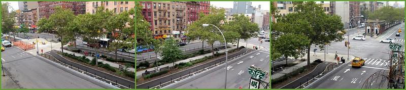 Allen Street Separated Bike Lane