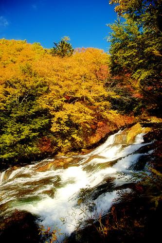 紅葉 日光 龍頭の滝 日本の滝百選