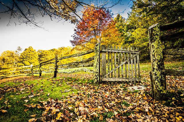 Grayson Highlands State Park (Photo courtesy of Sandy River Photography)