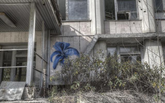 'Pripyat - Flower'