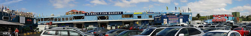sydney fish market panoramic