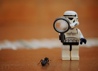 Could it be the droid I´m looking for?