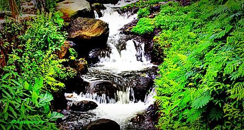 waterfall blinkagain
