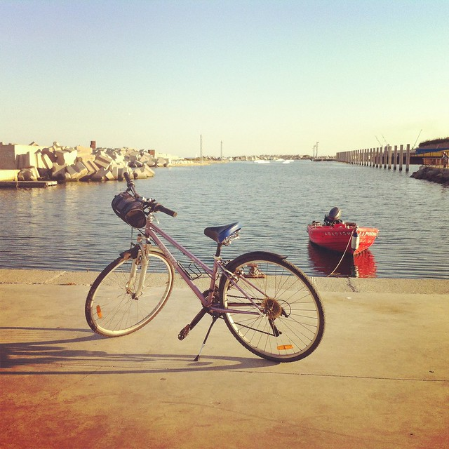 Bici Forum