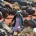 Mixtec Sheepherder in field of limestone formations - Ovejera mixteca; Región Mixteca, Oaxaca, Mexico por Lon&Queta