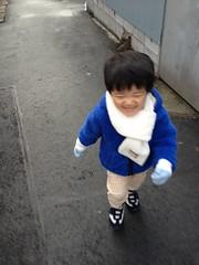 朝散歩 2013/1/24
