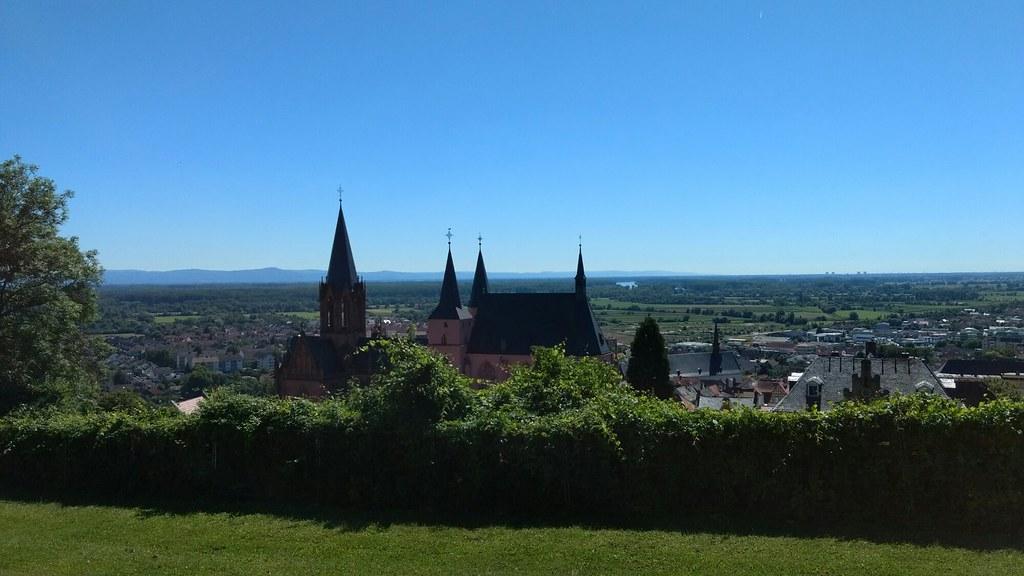 237 Burgruine Landskrone: Blick auf Oppenheim #Rheinterrassenweg