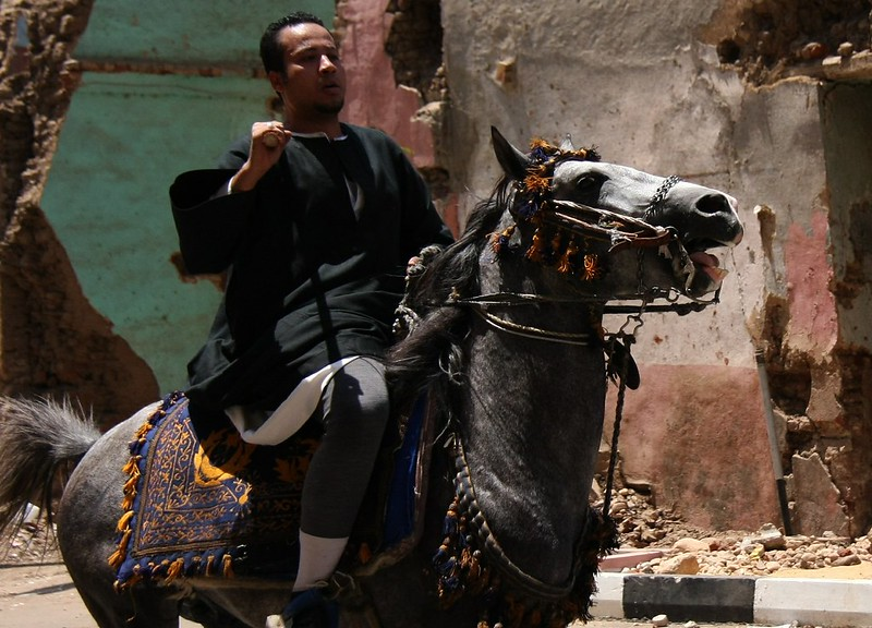 Horse Riding At Sheik Abu al-Haggag's Festival, Egypt