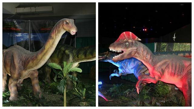Dino Exhibit3