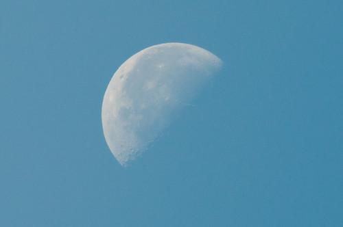 下弦の月(青空)
