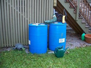 Double rain barrel system