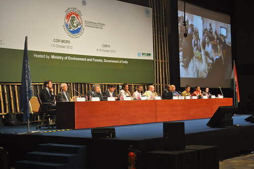 WWViews at COP11 - Side Event