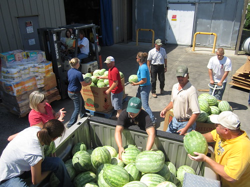 Volunteers unloading the gleaned watermelons at a food bank in Missouri.