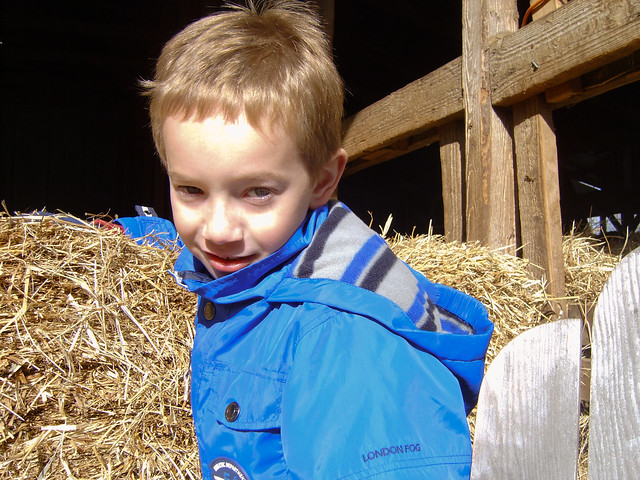 Having fun at the hay maze