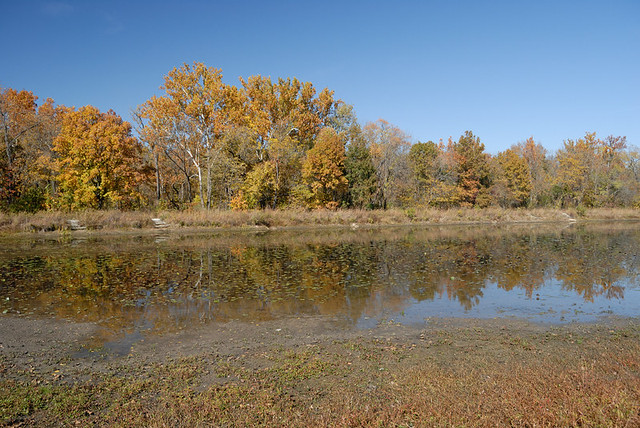 Shaw Nature Reserve (the Arboretum), in Gray Summit, Missouri, USA - lake