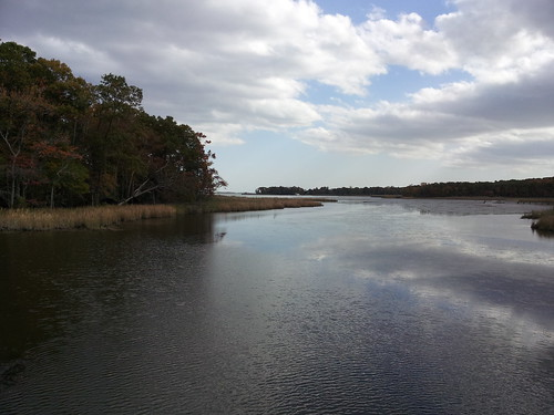 marsh2