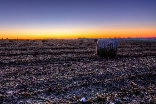 autumn sky usa sun fall nature field wisconsin rural sunrise landscape photography corn frost glow natural image pentax farm sigma photograph crop round hay 1020mm bale 2012 k5 roundbales sigma1020mmf456exdc kohlbauer hardpancom marckohlbauer