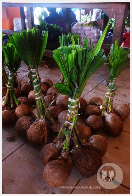2012 08 01_Magda i Tomek Dookola Swiata_Vanuatu-rynek_P1050243