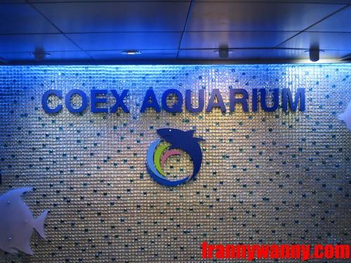 korea coex 5