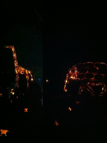 Blaze - giraffe and elephant