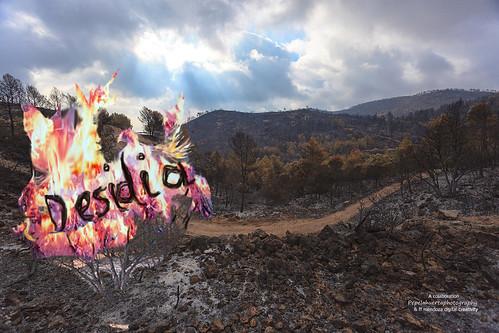Desidia1/ incendios; suma de apatias /colaboracion ffmendoza/pepelahuerta by FFMENDOZA -AUSTRALIA