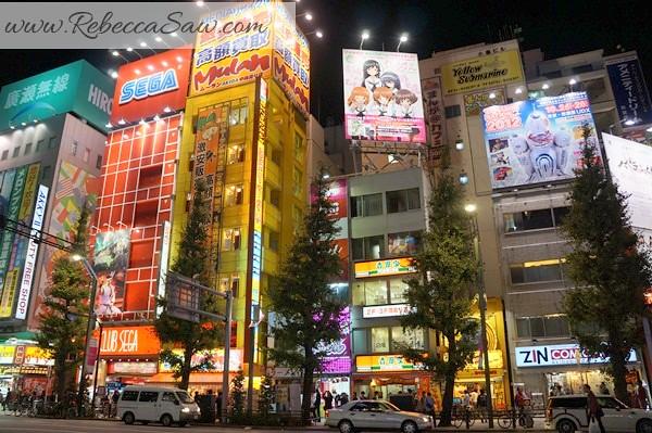 apan day 2 - Ueno, Tokyo station, akihabara-137