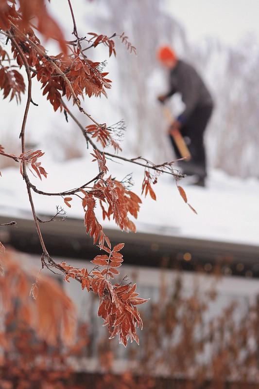 5_365 2013 Roof shovelling
