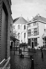 Pays-Bas 2013