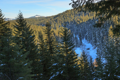 snow idaho snowshoeing clearwaternationalforest latahcounty