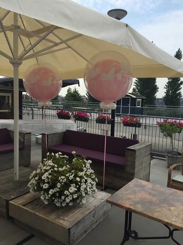 Cloudbuster Rond Love Doves Roze Terras aan de Maas Spijkenisse