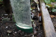 rain guage