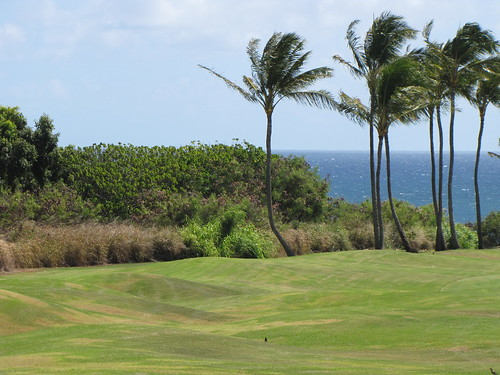 Kauai Lagoon Golf Club 1284