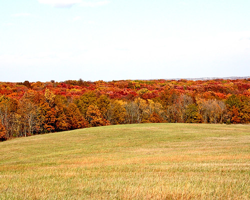 Beautiful Missouri Fall Color