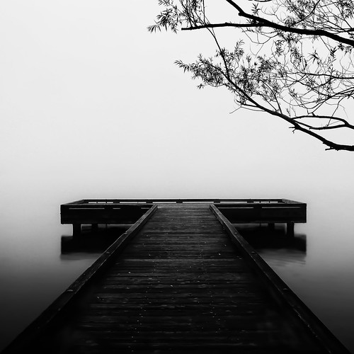 seattle bw fog greenlake shouldvedonealongexposure