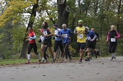 Víkend přinese 50. ročník maratonu ve Stromovce, vrchy kolem Špindlu a silniční Hronov-Náchod